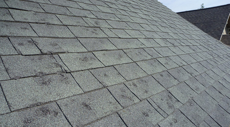 Hail Damage Roof