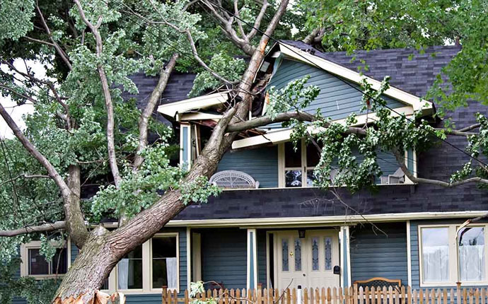 Services - Storm Damage Repair