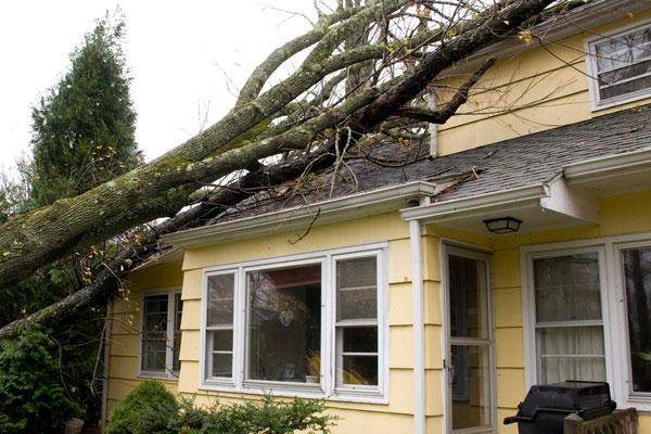 Service Area - Storm Damage Roof Repair